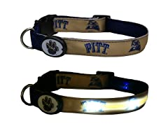 University of Pittsburgh LED Collar - L