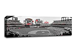 MLB 36x12 Touch of Color Ballpark Canvases