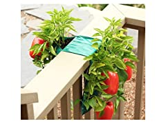Organic Hanging Sweet Pepper Bag