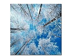 Frozen Sky (3 Sizes)