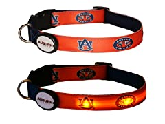 Auburn University LED Collar - Large