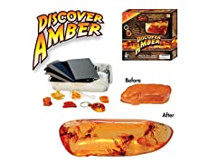 Discover Amber Science