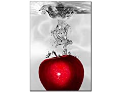 Roderick Stevens 'Red Apple Splash'