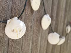 Scallop Shell String Lights- 10 Count