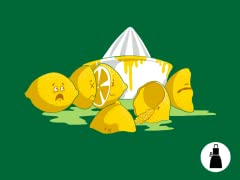 When Life Gives you Lemons….. Apron