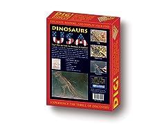Dig & Discover- Dinosaurs USA