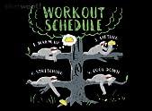 Ideal Workout
