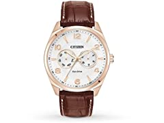 Eco-Drive Gold-Tone Leather Mens Watch