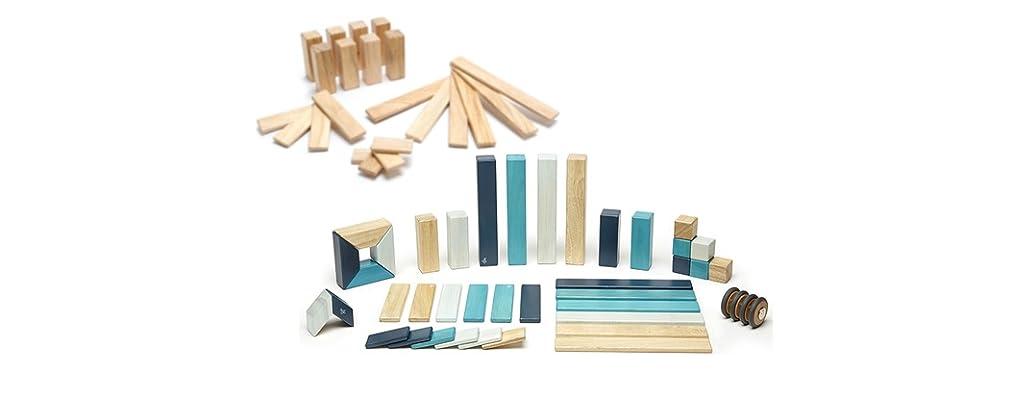 Tegu 64-Piece Magnetic Block Bundle