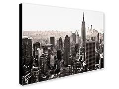 CATeyes Manhattan (2 Sizes)