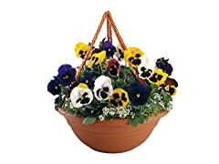 Hanging Planter, 17-Inch, Terra Cotta