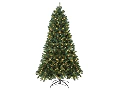 Spruce 7.5' Tree Pre-Lit 750 Clear Lights
