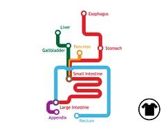 GI Metro