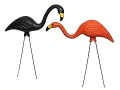 Bloem Spooky Flamingos, 2-Pack
