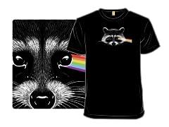 Dark Side of the Raccoon