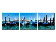 Gondola Fleet