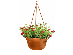 Hanging Basket, 12-Inch, Terra Cotta