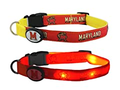 University of Maryland LED Collar - L