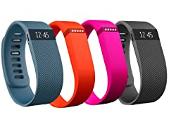 Fitbit Flex or Charge Wristband
