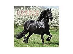 2021 Full-Size Wall Calendar Horses