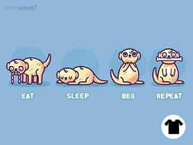 Eat Sleep Beg Repeat
