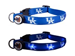 University of Kentucky LED Collar - Med