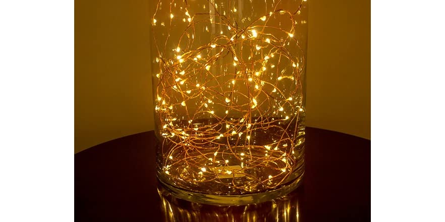 Primark Copper String Lights : Copper LED String Lights w/ remote (33f)