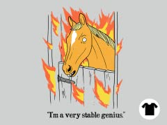 A Stable Genius