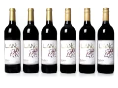 Lang Wines Barbera (6)