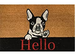 Outdoor Mat - Hello Dog