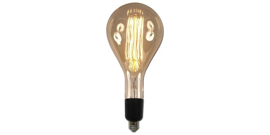 large base light bulb vintage
