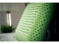 Carbon Argan Secret 6-in11 Bacteria Protection Pillow