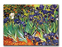 Vincent van Gogh Irises at Saint-Remy - Canvas Art
