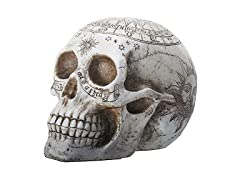 Resin Skull with Astrology
