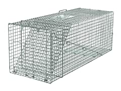 X-Large Professional One-Door Trap