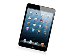 16GB iPad mini with Wi-Fi