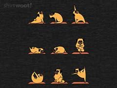 Pug Yoga Remix