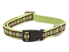 "Finery 3/4"" Quick Snap Collar"