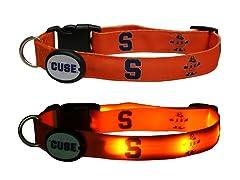 Syracuse University LED Collar - Med