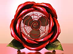 Cool Winds Red Rose