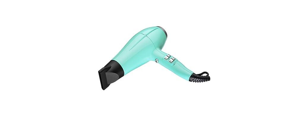 NuTika Power Trip Hair Dryer, 3 Colors