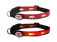 University of Arkansas LED Collar -Large