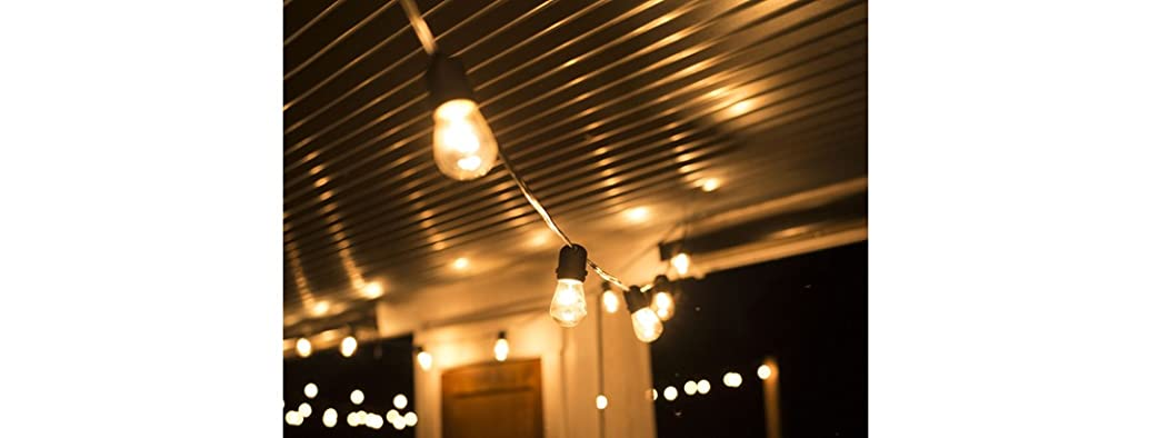 48-Ft Commercial Grade String Lights