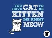 Cat to be Kitten