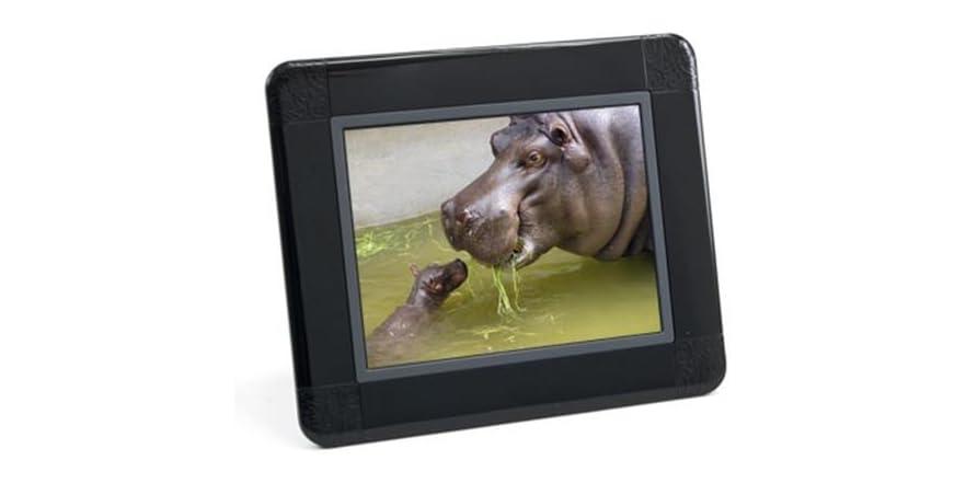"HP 8"" Digital Photo Frame"