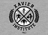 The Xavier Institute