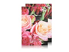 Rose Facial Sheet Mask - Twin Pack