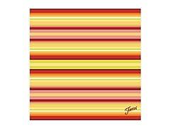 Fiesta Warm Stripe Trivet