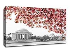 Cherry Blossoms over Jefferson Memorial