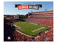"Georgia Bulldogs Stadium 8"" x 10"""